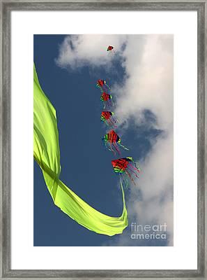 High Hopes Framed Print by Angel Ciesniarska