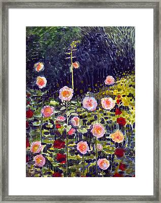 Hollyhocks Framed Print by Katherine Miller