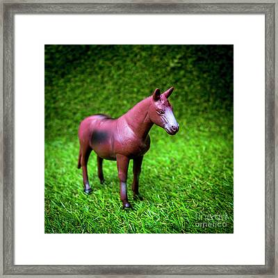 Horse Figurine Framed Print by Bernard Jaubert