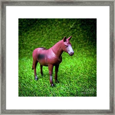 Horse Figurine Framed Print