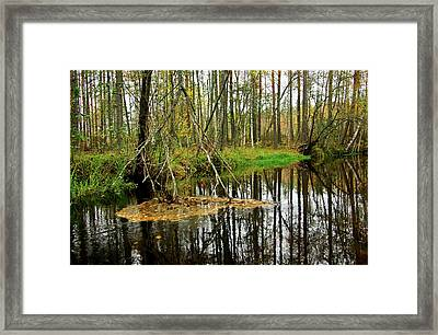 Huosios River Framed Print