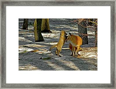 I Love You Mommy Framed Print by Asbed Iskedjian