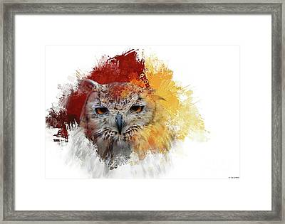 Indian Eagle-owl Framed Print