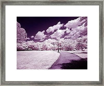 Infrared Garden Framed Print