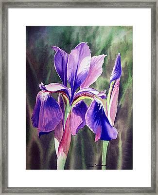 Purple Iris Framed Print by Irina Sztukowski