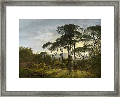 Italian Landscape With Umbrella Pines Framed Print
