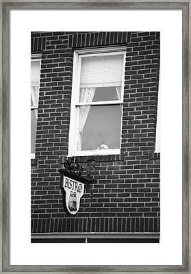Jonesborough Tennessee - Window Over The Shop Framed Print by Frank Romeo