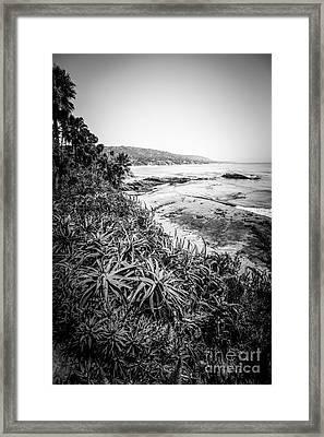 Laguna Beach Black And White Photo Framed Print by Paul Velgos