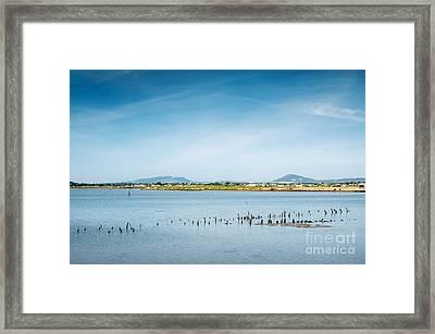Lake And Poles Framed Print by Carlos Caetano