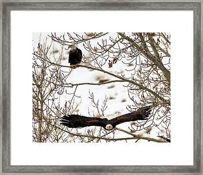 Left Behind Framed Print by Mike Dawson