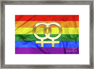Lesbian Symbols Framed Print