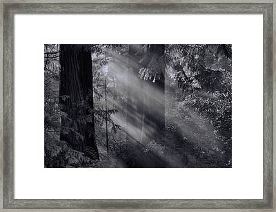 Let There Be Light Framed Print