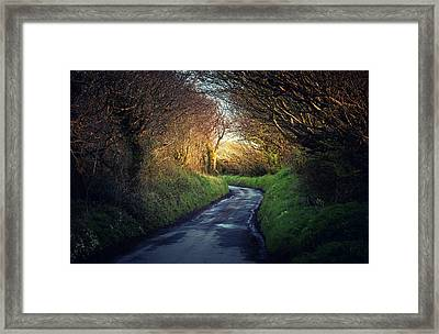 Light And Shadows Framed Print by Svetlana Sewell