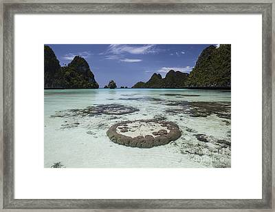 Limestone Islands Surround Corals Framed Print by Ethan Daniels