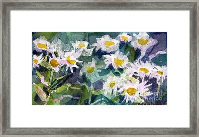 Little Asters Framed Print