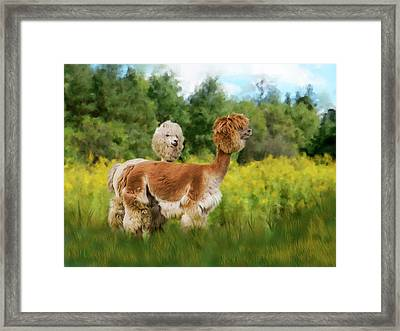 2 Little Llamas Framed Print by Mary Timman