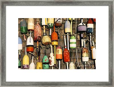 Lobster Buoys. Framed Print by John Greim