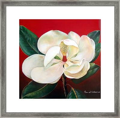 Magnolia Framed Print by Muriel Dolemieux