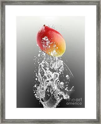Mango Splash Framed Print