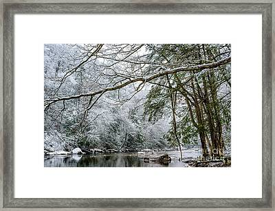 March Snow Along Cranberry River Framed Print