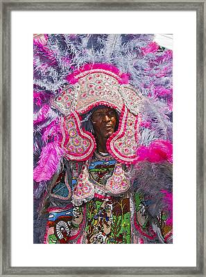 Mardi Gras Indians Framed Print by Terry Finegan