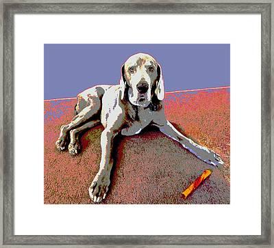 Martina Framed Print
