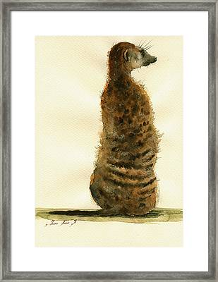 Meerkat Or Suricate Painting Framed Print by Juan  Bosco