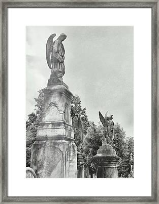Messengers Framed Print by JAMART Photography
