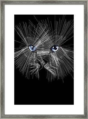 Mister Whiskers Framed Print by ISAW Gallery