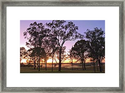 Misty Rural Scene With Dam And Trees Framed Print