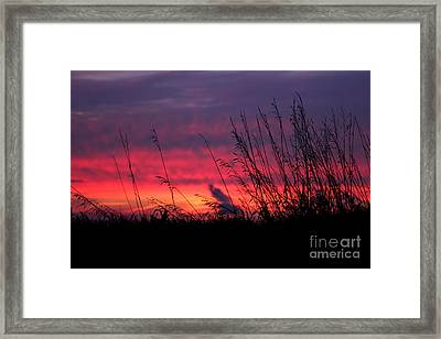 Morning Poetry Framed Print