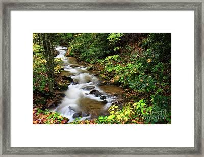 Mountain Creek Framed Print