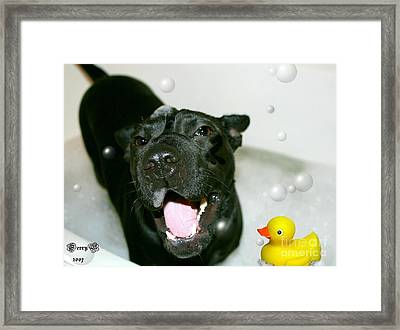 Ms. Raisin Framed Print