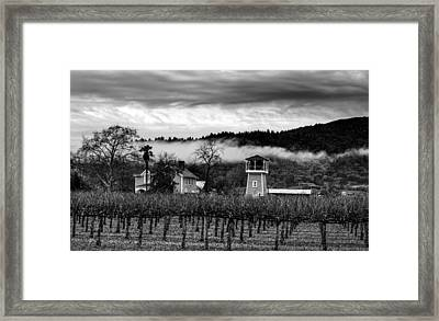 Napa Valley Vineyard On A Cloudy Day Framed Print by Mountain Dreams