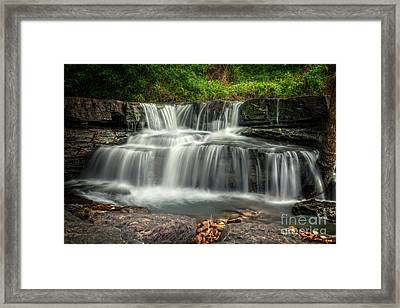 Natural Dam Framed Print by Larry McMahon