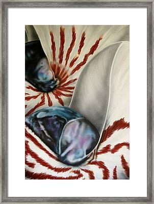 2 Nautilus Framed Print