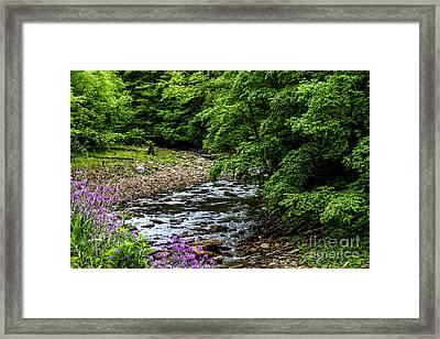 North Fork Cherry River Framed Print by Thomas R Fletcher