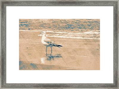 Ocean Breeze Walk Framed Print by JAMART Photography