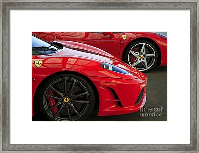 2 Of A Kind Framed Print by Dennis Hedberg