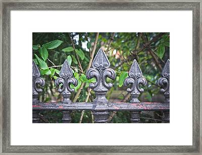Old Fence Framed Print by Tom Gowanlock