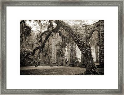 Old Sheldon Church Ruins Framed Print
