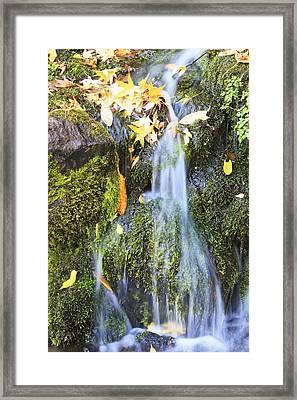 Oregon Cascades, Oregon, Usa Framed Print by Craig Tuttle