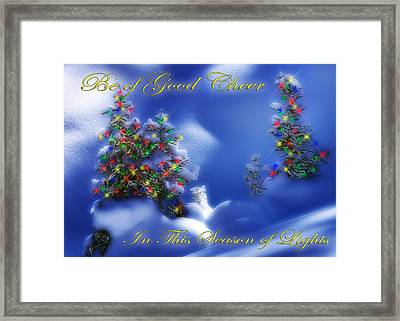 Outdoor Christmas Trees Framed Print by Utah Images
