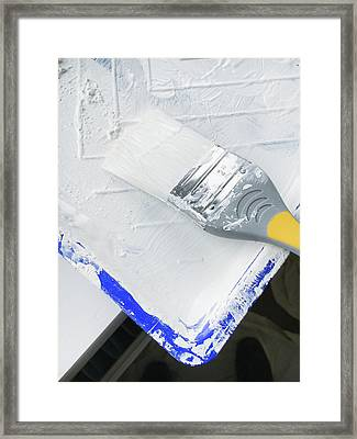 Paint Brush Framed Print by Tom Gowanlock