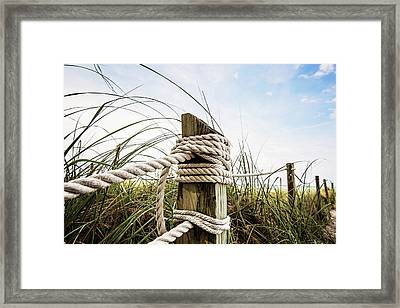 Path To Paradise Framed Print by Scott Pellegrin