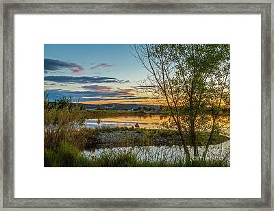 Peaceful Framed Print by Robert Bales