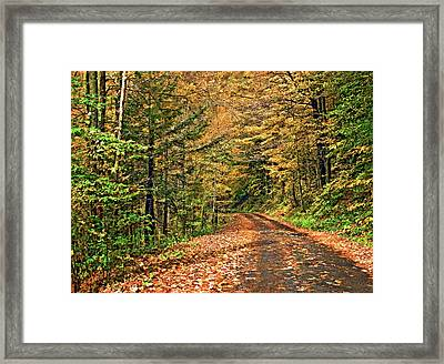 Pennsylvania Back Road 3 Framed Print