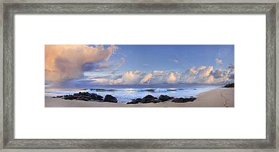 Pink Fluffies Framed Print by Sean Davey