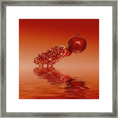 Pomegranate Superfood Fruit Framed Print by David French