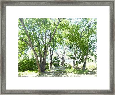Ponce, Urban Ecological Park Framed Print